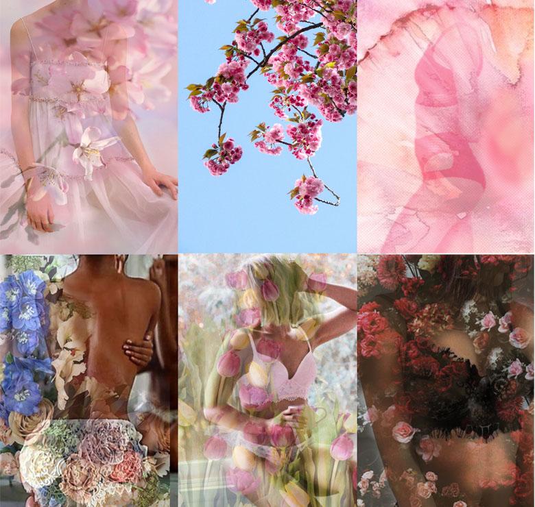 Compose_lingerie